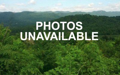 Barton Spur RD, Ferrum VA – UNDER CONTRACT