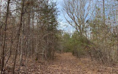 City of Martinsville, VA Land – $4,000/acre