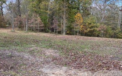 Roselawn Lane – Boones Mill, VA – 2 lots $45,000 each