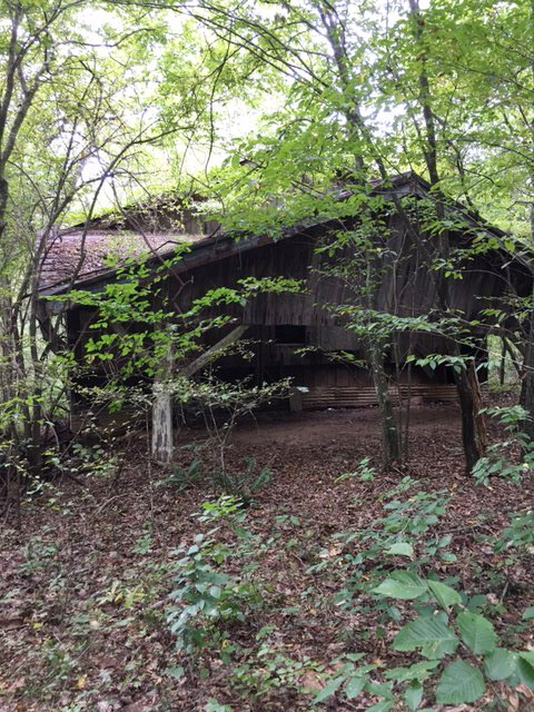 Land for sale in Ferrum, VA