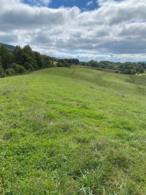 Brook Valley Farm 04
