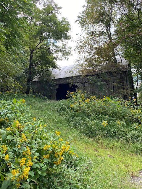 Brook Valley Farm 10
