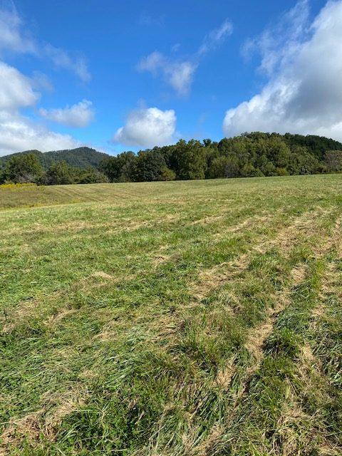Brook Valley Farm 12