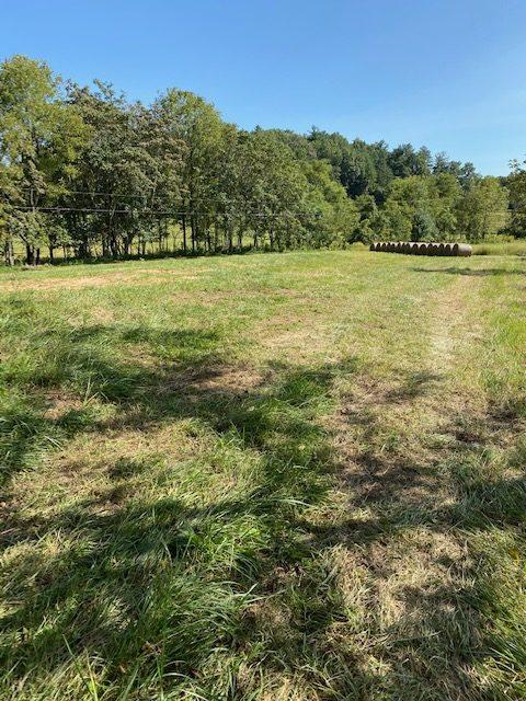 Brook Valley Farm 16